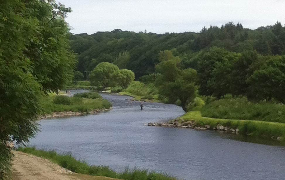 River Deveron Salmon Fishing